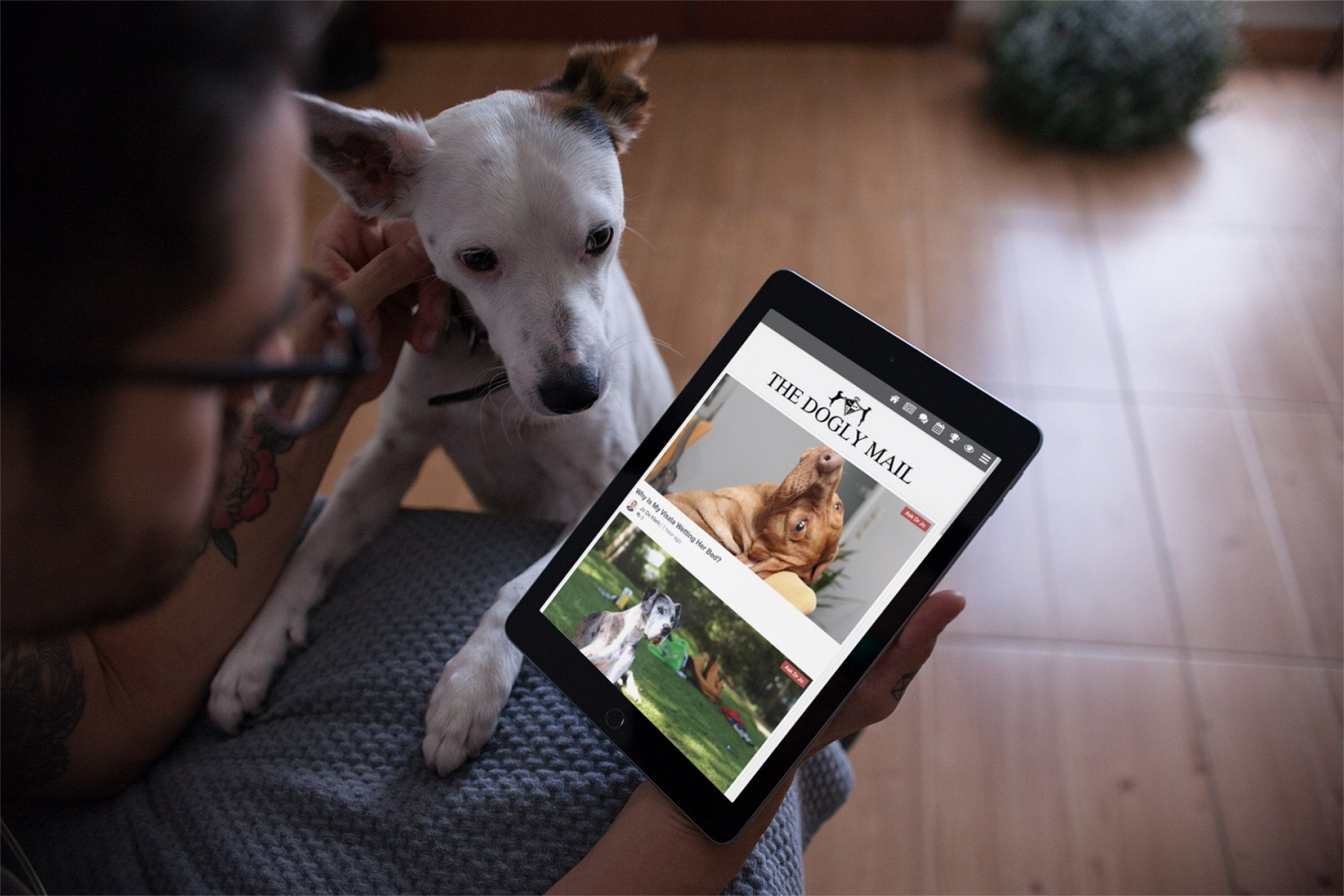 ipad-mockup-featuring-a-man-petting-his-dog-at-home-22834.jpg.c52b6185166706425f04be3a79a31a7c.jpg